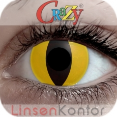 Farbige Kontaktlinsen Crazy Lenses Yellow Cat (Cateye)