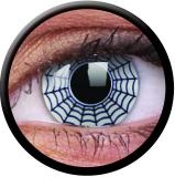 Farbige Kontaktlinsen Spider