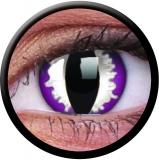 Farbige Kontaktlinsen Purple Dragon Eyes