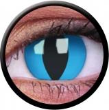 Farbige Kontaktlinsen Cheshire Cat